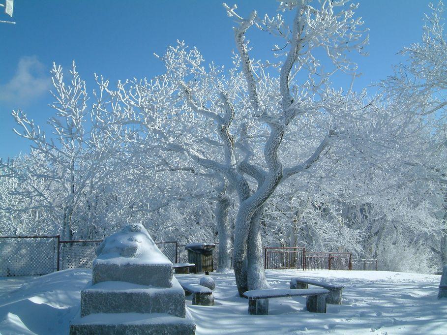 """Képtalálat a következőre: """"kilátás dobogókő télen"""""""